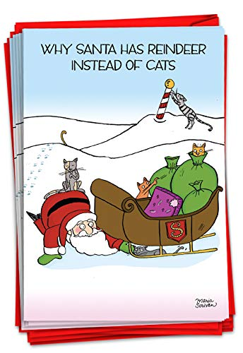 12 Boxed 'Reindeer Cats' Christmas Cards with Envelopes 4.63 x 6.75 inch, Happy Holidays with Santa and Kitty Cats in Sleigh Christmas Notes, Silly Kitties Playing with Santa Cards B1884
