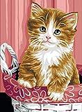 Royal Paris Kits Y Lienzo Canvas Kitten in a Basket, 40cm x 60cm x 1cm
