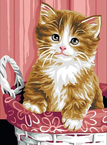 Kitten in een mand tapijt Canvas