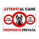 SNOGGHY Targa Cartello ATTENTI al Cane Corso (30 X 20 CM)