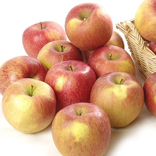 国華園 食品 りんご 青森産 家庭用葉とらずふじ 5kg