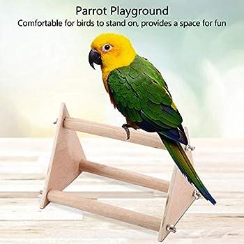 Perroquet Oiseau Perch, Portable en Bois Drôle Perroquet Playstand Oiseau Playground Gym pour Cockatiels Conures Africains Greys Perruches Finch Love Birds