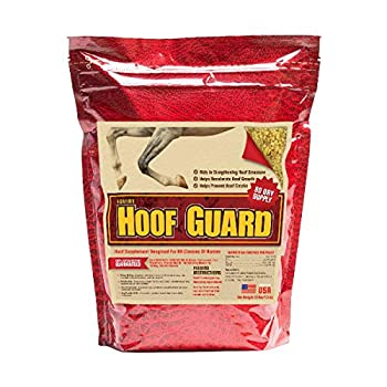 Equine Hoof Guard Concentrated Hoof Supplement For Horses With Biotin Msm Methionine And Zinc 10 lb
