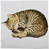 Esschert Design tp285 Pack of 20 Cat Napkins, White
