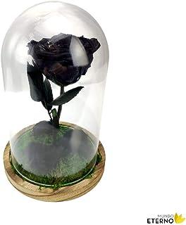 Cúpula Bella y Bestia Rosa Eterna Preservada Negra