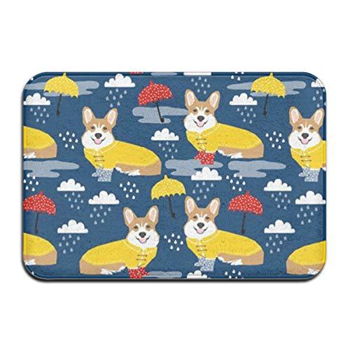 HMYATSO Dachshund Umbrella Rain Pattern Non Slip Absorbent Doormat Resist Dirt Front Door Mat 4060