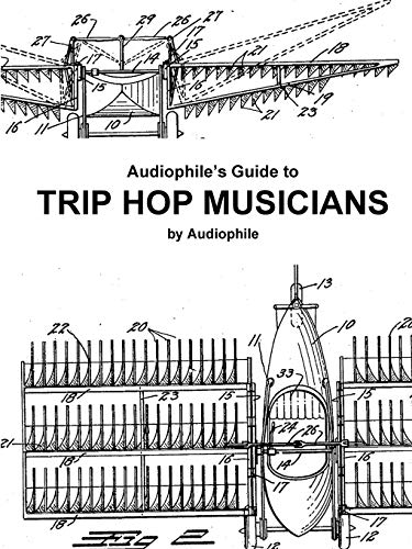 Audiophile's Guide to Trip Hop Musicians