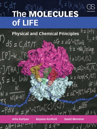 The Molecules of Life: Physical and Chemical Principles: Physical Principles and Cellular Dynamics (English Edition)