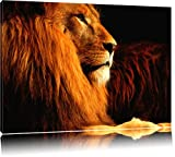 Majestätischer stolzer Löwe Format: 120x80 auf Leinwand,