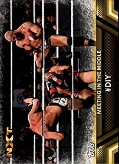 2017 Topps WWE Then Now Forever Finishers and Signature Moves #F50#DIY
