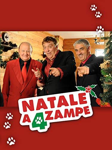 Natale a 4 zampe