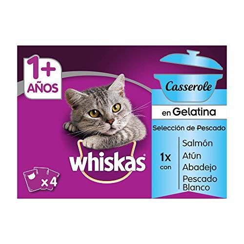 Whiskas Casserole Comida Húmeda para Gatos Adultos Selección Pescados, Multipack (13 cajas x 4 sobres x 85g) ⭐