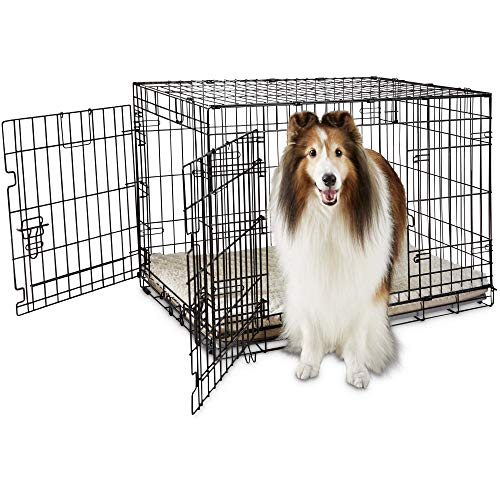 You & Me 2-Door Folding Dog Crate, 36' L x 23' W x 24' H, Large