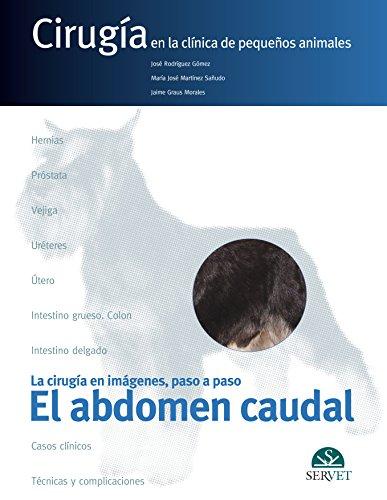 El abdomen caudal. Cirugía en la clínica de pequeños animales - Libros de veterinaria - Editorial Servet