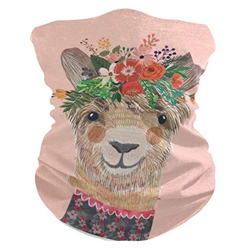 AJINGA Sturmhaube, Gesichtsschal, Maske, Staub, Frauen Gesichtsmaske mit Tasche innen, 2 Stück Filter, Halstuch, Lama, Blume, Krone, Charro