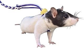 Best dwarf hamster leash Reviews