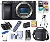 Sony Body Cams - Best Reviews Guide