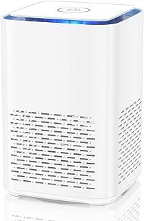 Duomishu Purificador de Aire para Hogar con Filtro HEPA, Purificador de Aire Portatil 100% Sin Ozono, Difusor de Aroma Fil...