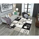 LWYNZ Alfombra Modern Art Office Cover Alfombras Impermeables para Sala de Estar Tela en Blanco y Negro Estampado Hogar Colorido