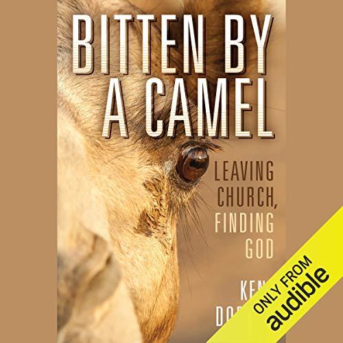 Bitten by a Camel cover art