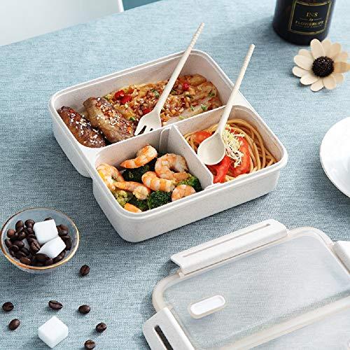 Qisiewell Bento Box mit 3 Fächern Verschiebbar Und Löffel 1300ml Auslaufsichere Brotdose aus Weizenstroh Lunchbox für Studenten Büroangestellte Geeignet für Mikrowellen Geschirrspüler (Hell Braun)
