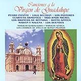Canciones a la Virgen de Guadalupe (14 Tracks)