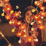 Halloween Decoracion Hojas de Otoño, Halloween Calabazas Decorativas Luces, LED Guirnaldas luminosas, Artificial Maple Leaves Luces de Cadena Halloween, Thanksgving, Navidad Deco,1.5m 10 lights