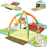 Tiny Wonders Baby Activity Gym Mat, Infant Indoor Playmat W/Hanging Rattle Toys, Tummy Time Mat for 3, 6, 9, 12, 18 Months, Age 1, 2 Year Olds, Newborn, Baby Boys, Baby Girls, Toddlers