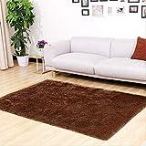 CNFQ Shaggy alfombras de Pelo Largo alfombras Salon alfombras de habitacion moquetas Sala de Estar (marrón, 120 x 80 cm)