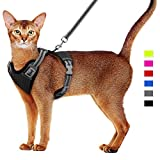 Supet Imbracatura e guinzaglio per Gatti Imbracatura per Gattini Imbracatura Morbida in Rete Imbracatura Regolabile per Gilet con Cinturino Riflettente