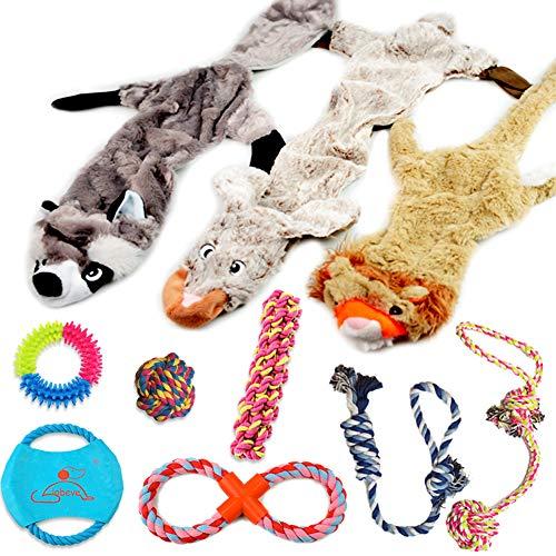 Lobeve Variety Pet Dogs Toy Set