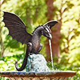 WFRAU Statue Brunnen Drache Patinierte Bronze Feinguss Massive Bronze Wasserspiel Skulptur Drachenskulptur Wasserspray Wasserlandschaft Skulptur für Hausgarten Dekoration
