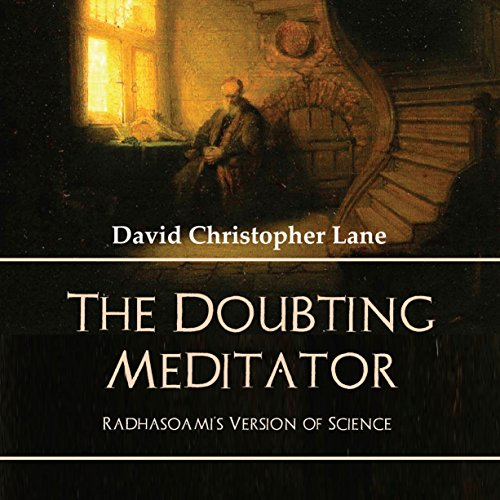 The Doubting Meditator audiobook cover art