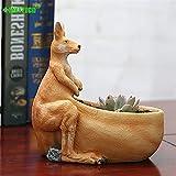 sknonr Simulación Canguro Resina Maceta Olla Animal Escultura Artesanal suculento Planta Maceta Almacenamiento contenedor decoración del hogar Accesorios
