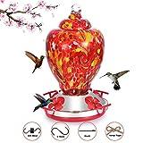 Hapito Hummingbird Feeder for Outdoors - Hand Blown Glass, 26 Ounces Nectar Capacity, No...