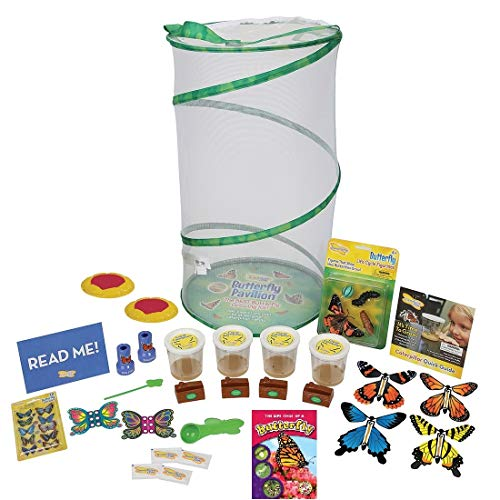 Insect Lore Platinum Edition Butterfly Pavilion Kit, Green