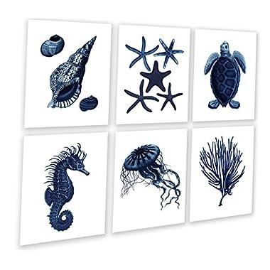 Dark Navy Blue Beach Wall Art Decor Set of 6 Unframed Prints Beach Wall Decor Seashells, Sea Turtle, Starfish, Seahorse, Sea Coral.