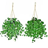 Artificial Hanging Plants,2 Pack Fake Eucalyptus Plants Potted Faux Greenery Vines in Cement Pot for Home, Kitchen, Indoor Outdoor Decor (Artificial Hanging Plants - 01)