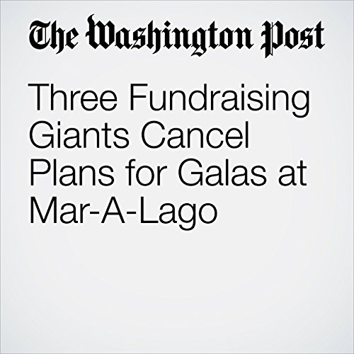 Three Fundraising Giants Cancel Plans for Galas at Mar-A-Lago copertina
