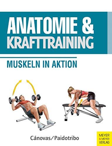 Anatomie & Krafttraining: Muskeln in Aktion (Anatomie & Sport)