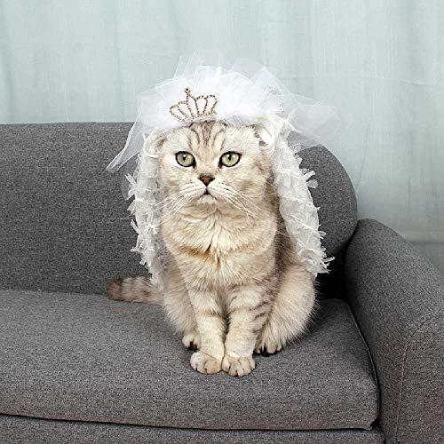 zhtao Heimtierbedarf Frühling Und Sommer Dünne Katze Rock Brautkleid Brautkleid Brautjungfer Spitzenkleid Kleidung L/Weiß