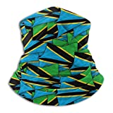 Not Applicable Face Cover,Tanzania Flag Wave Collage Neck Warmer Gaiter Head Wrap Scarf Multifunctional for Kids Half Face Headwear,25x30cm