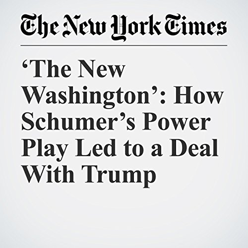 'The New Washington': How Schumer's Power Play Led to a Deal With Trump copertina