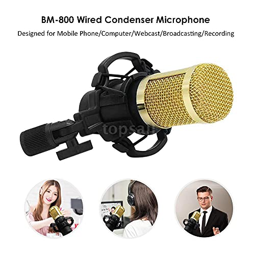 Buddymate BM-800 Sensitive Condenser Microphone Set with Adjustable Arm Stand/Shock Mount/Audio Splitter & Double Layer Pop Filter | Perfect Mic Set for Recording & Broadcasting (Random Colour)