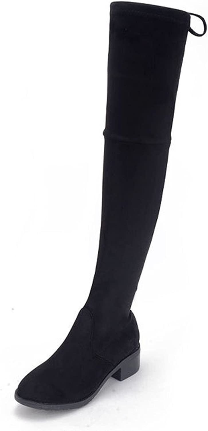 Ladola Womens Cold-Weather Zipper Over Knee Low-Heel Urethane Boots
