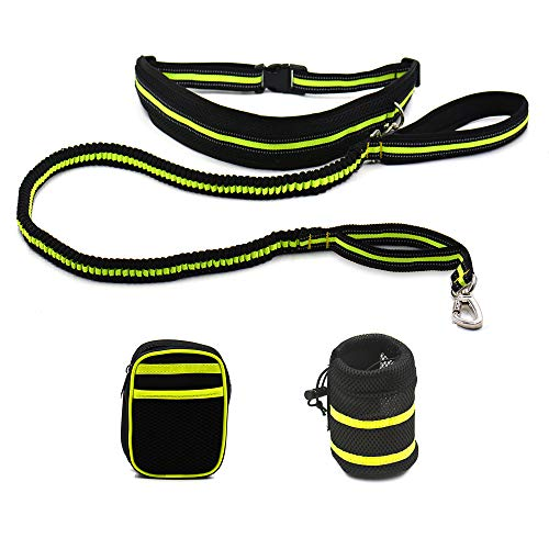 iQ-Pet Jogging-Leine 2,4 m Lange Premium Hunde-Leine (Grün)