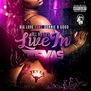 All My Ex's Live in Texas (feat. Donnie B Good)
