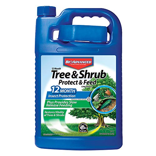 BioAdvanced 701915A 12 Month Tree and Shrub Feed Fertilizer with Insect Protection, 1-Gallon, Concentrate