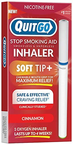 Quit Smoking Aid Oxygen Inhaler + Soft Tip Chewable Filter to Help Curb Cravings, Nicotine Free Non-Addictive Stop Smoking Support & Oral Fixation Relief (1 Pack, Cinnamon)