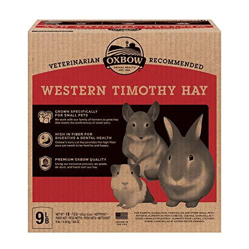 Oxbow Animal Health Western Timothy Hay